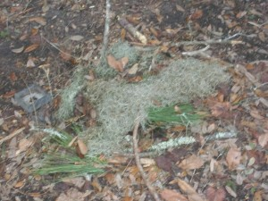 Squirrel Grave